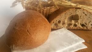 Pane Speciale con Farina tipo 1 Biologica macinata a pietra, Panificio Campari