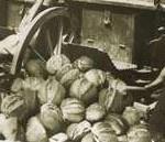 Pane in tempo di guerra